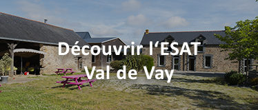 Miniature ESAT Val de Vay