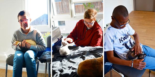 L'atelier « Un animal, des anim'mots » permet aux jeunes de l'IME La Fleuriaye de prendre soin de lapins et furets.